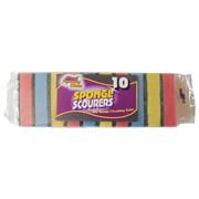 Squeaky Clean Ramon  Sponge Scourers 10s (800.10SQ2)