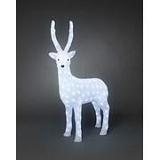 Acrylic Reindeer Led 105cm (6168-203EE)