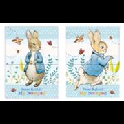 Mini Notebooks Peter Rabbit (RFS13124)