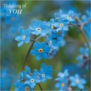 Blank Card Thinking Of You Forgetmenots (SM14220Y)