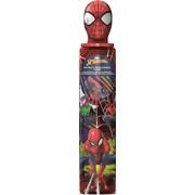 Spiderman Stationery Tube (SPSTU3)