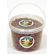 Supa Dried Mealworms 5lt Tub (SS824)