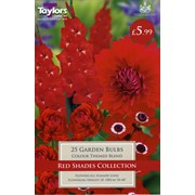 Taylors Shades Collection Red 25s (SV539)
