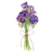 Thinking Of You Card Anemones Bunch (BS77425Y)