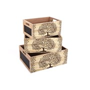 Sifcon Set Of 3 Tree Of Life Chalk Crates (TL0049)