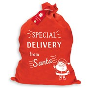 Xmas Basic Special Delivery Sack (XAKGZ214)