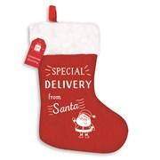 Special Delivery Xmas Stocking (XAKGZ315)
