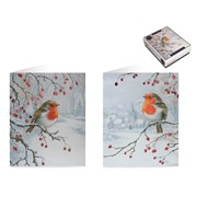 Tom Smith Luxury Box Robin Cards 20s (XAKTC402)