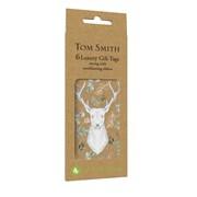 Tom Smith Gift Tags Wonderland Wonder 6s (XAKTT508)