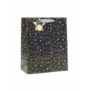 Gift Bag Nordic Sky Large (XBV-46-L)