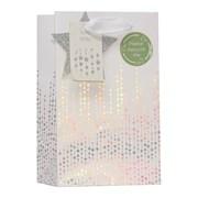 Sparkle & Shine Gift Bag Small (XBV-97-S)