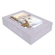 Christmas Assortment Box Cards Snowy Xmas (XBVB2021T)