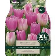 Taylors Bulb Tulip Fondant Fancy (XL113)