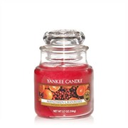 Yankee Candle Yankee Cndle Jar Mandarin Cranberry Small (1053156E)