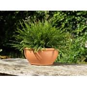 Y.f.pots Bulb Bowl Medium (53343)