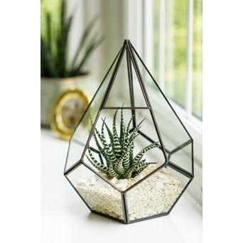 Gardman Glass Teardrop Terrarium (70200443)