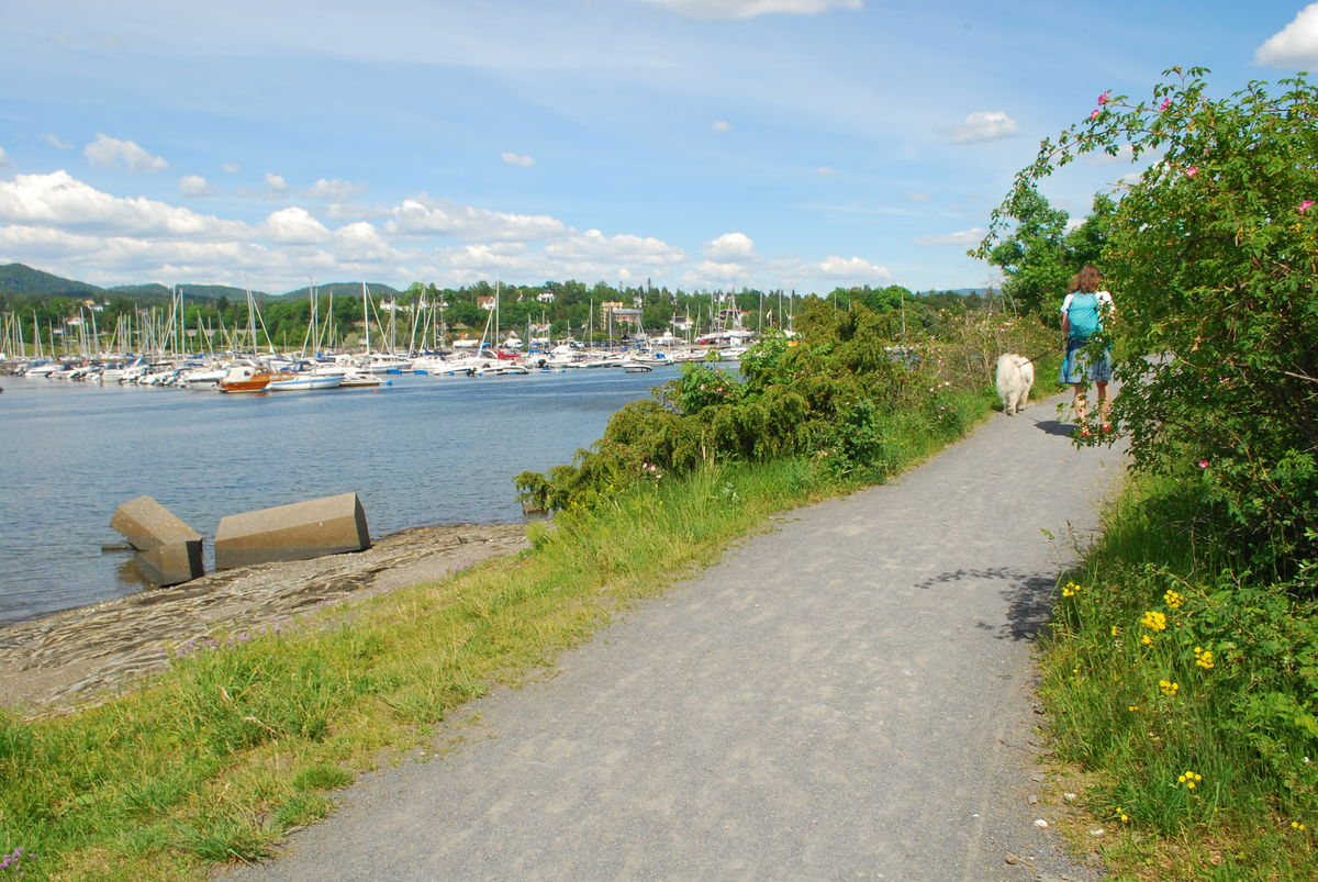 Turen går til båthavna i Solvikbukta, som vises i bakgrunnen på bildet.