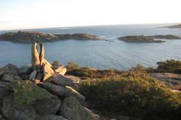 Utsikt mot Tjamsøya fra Sauevollheia. - Foto: Floke Bredland