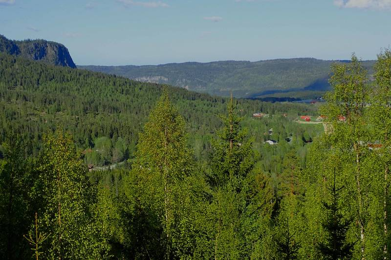 Utsikt mot Hørtekollen, Solberggårdene og Sylling