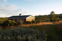 Nystøyl - Foto: Aust-Agder Turistforening