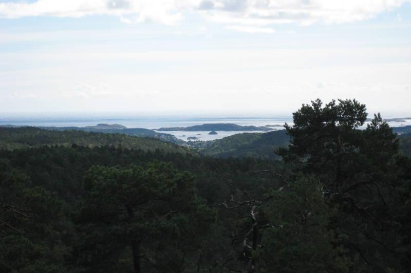Litt av utsikten. Hllenfjorden midt på bildet.