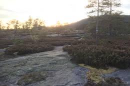 Rett før bålplass - Foto: Einar Vestnes