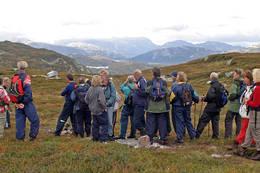 Mot Hollane. bak sees Lifjells høyeste topp Røysdalsnuten 1291 og det mektige Mælefjell 1414. - Foto: Ottar Kaasa, Notodden