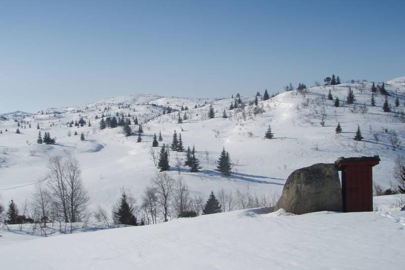 Idyllisk ved utedoen på Nystøyl