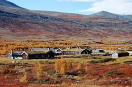 Høsten er serdeles fin ved Breisjøseter - Foto: