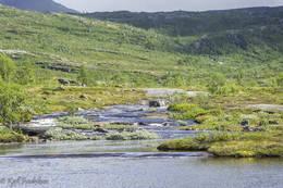 Elva fra Tennvatnet - Foto: Kjell Fredriksen