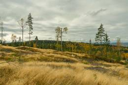 Utsikt til Hauglifjellet fra Ausenfjellet - Foto: Øystein Berntsen