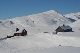Åsedalen - Foto: Torill Refsdal Aase