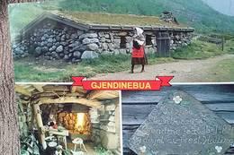 GJENDINEBUA: Den norske bondekvinnen- og folkesangeren Gjendine ble født i steinbua Gjendebu i Jotunheimen. - Foto: Ukjent