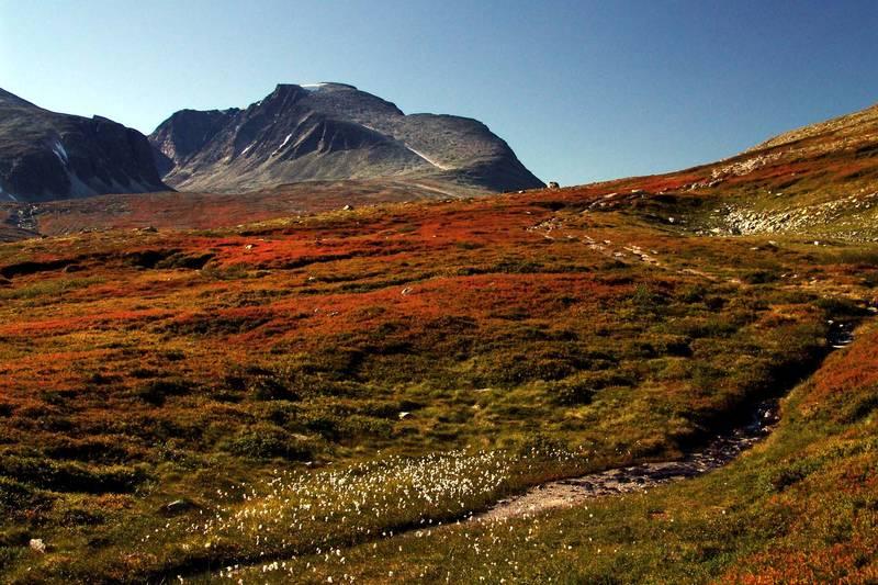 Høstfarger i Rondane
