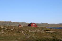 Rauhelleren - Foto: Thea Hajum Utvik