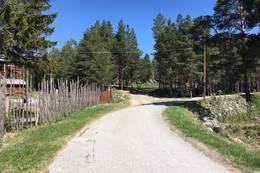 Start ved det gamle sagbruket - Foto: Steinar Tolf Jacobsen