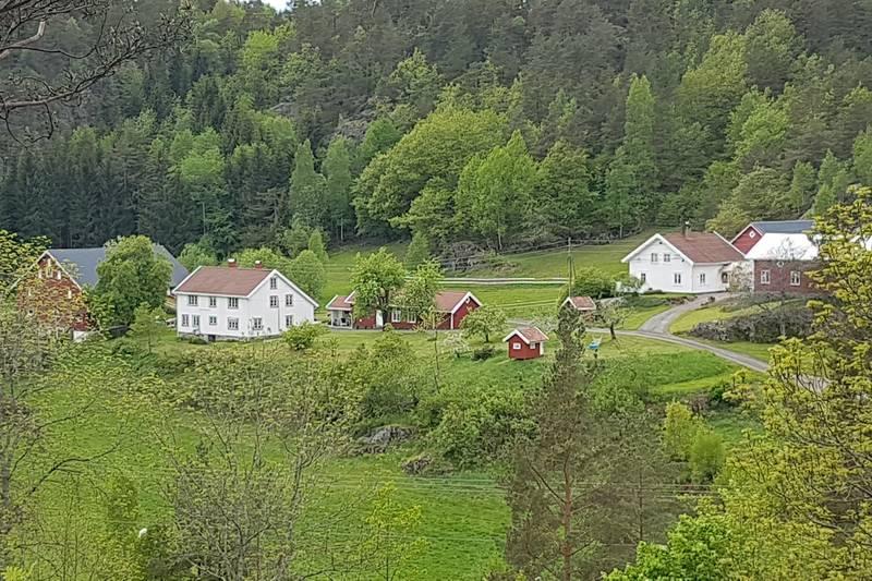 Rett etter turstart er det fin utsikt mot Torsdal