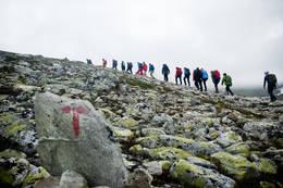 - Foto: Sindre Thoresen Lønnes
