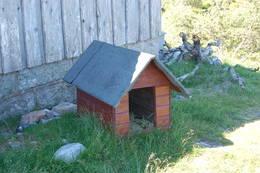 Du finner eget hundehus på Mjåvasshytta - Foto: Walter Pedersen