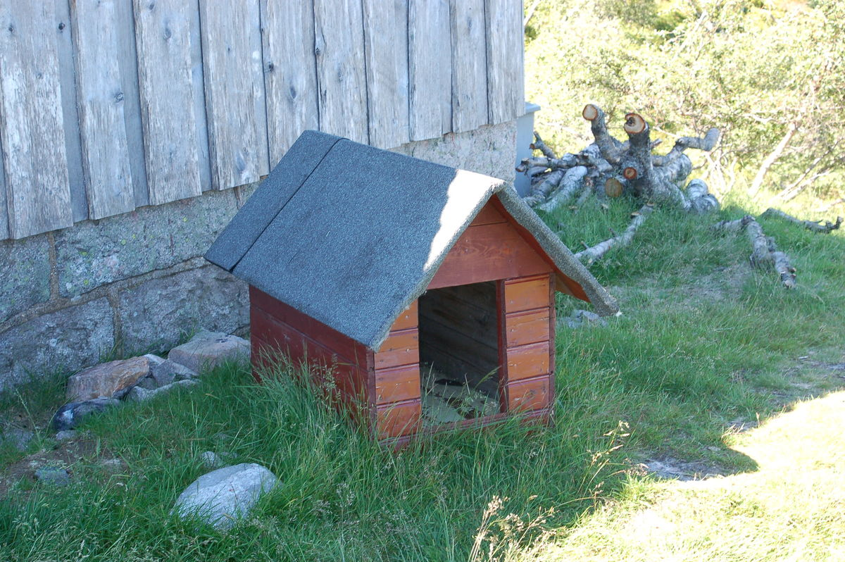 Du finner eget hundehus på Mjåvasshytta