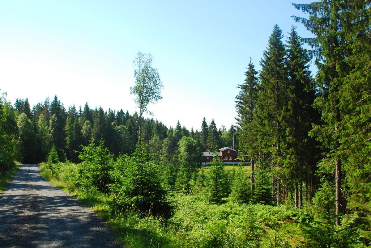 Turveien går forbi Furuholmen serveringssted, som drives av Skiforeningen. Sjekk åpningstider.