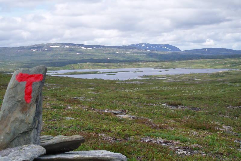 Fra ruta mellom innstua og Ferslia. Øystre Sulsjø i forgrunnen og Hermannssnasa bak.
