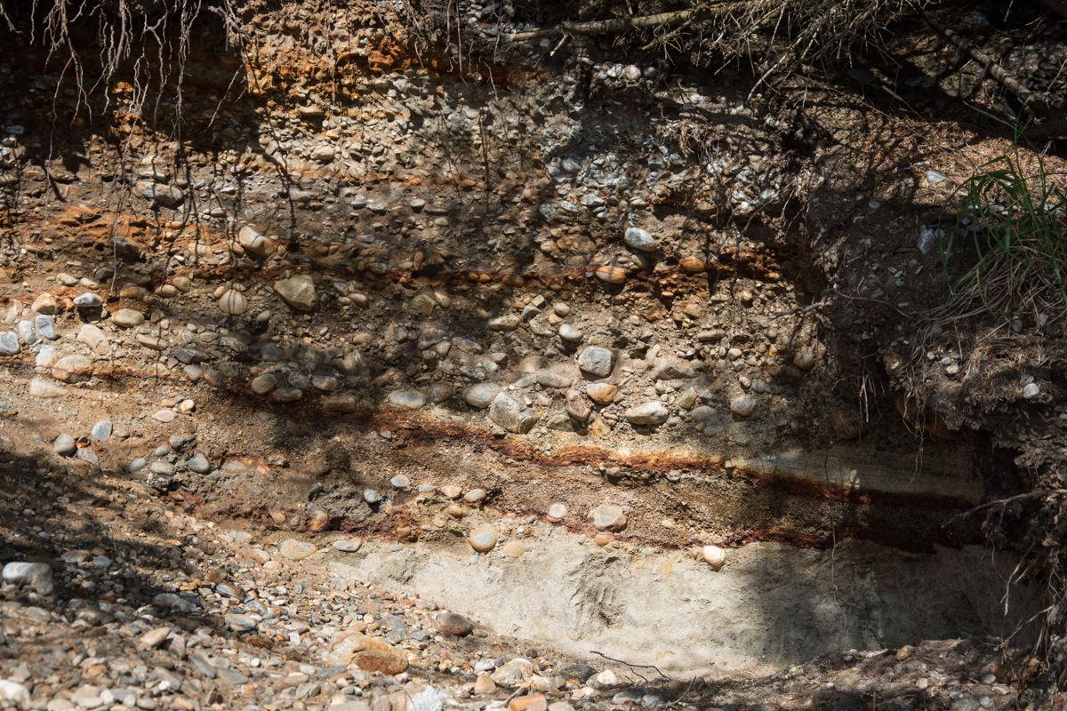 I skråningen innenfor stranden kan du se lag av stein og grus som har løftet seg fra under havnivå.