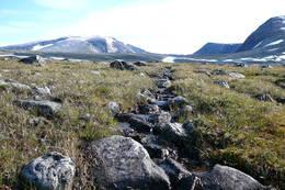 Starten på turen mot Snøhetta -  Foto: Inger Lise Kristensen
