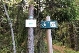 Stien går av til toppen - Foto: Birgit Vildalen