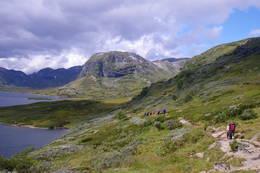 Utsikt mot Iungsdalen -  Foto: Ål Utvikling