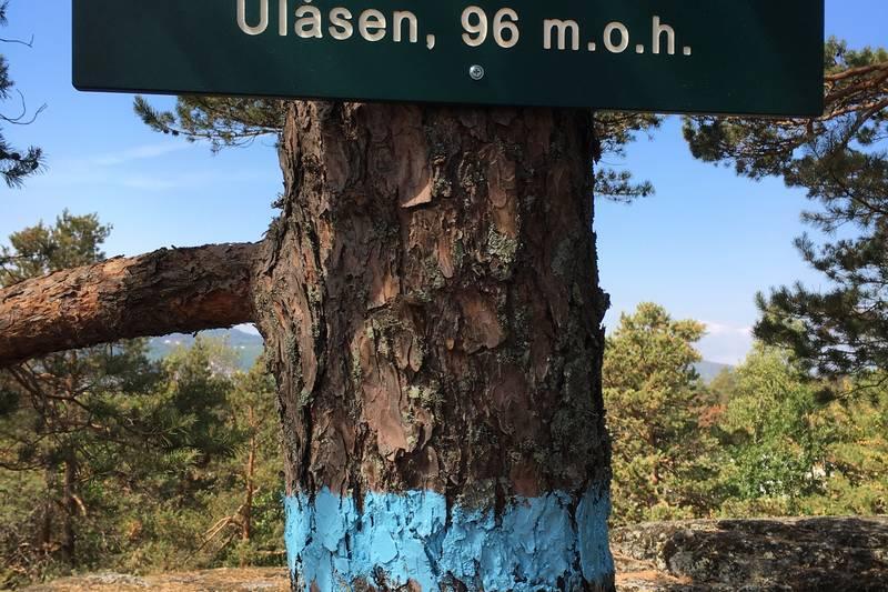 Ulåsen- grønn lunge i Larvik.