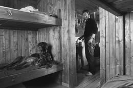 Inne på Balvasshytta er det tilrettelagt for hund.  - Foto: Morten Fasseland