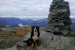 Utsikt vestover mot Florø -  Foto: Jan Roar Sekkelsten
