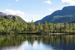 I sørøstre ende av Svartvatnet - Foto: Kjell Fredriksen